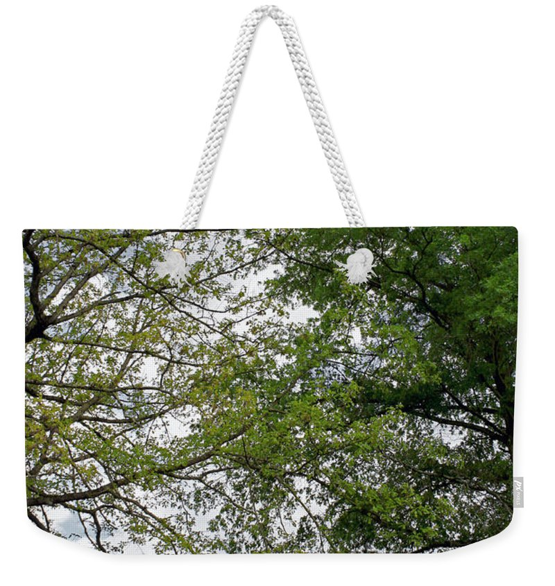 Landscape Weekender Tote Bag featuring the photograph Peaceful Grandeur by Todd Blanchard