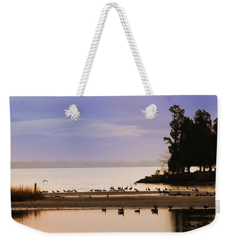 Chesapeake Weekender Tote Bag featuring the photograph Peaceful Morning by Bill Cannon