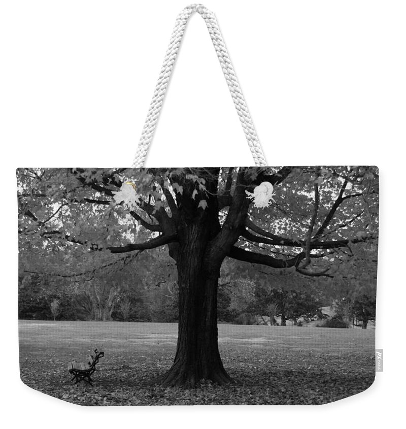 Maymont Weekender Tote Bag featuring the photograph Peaceful Park by Tina Meador