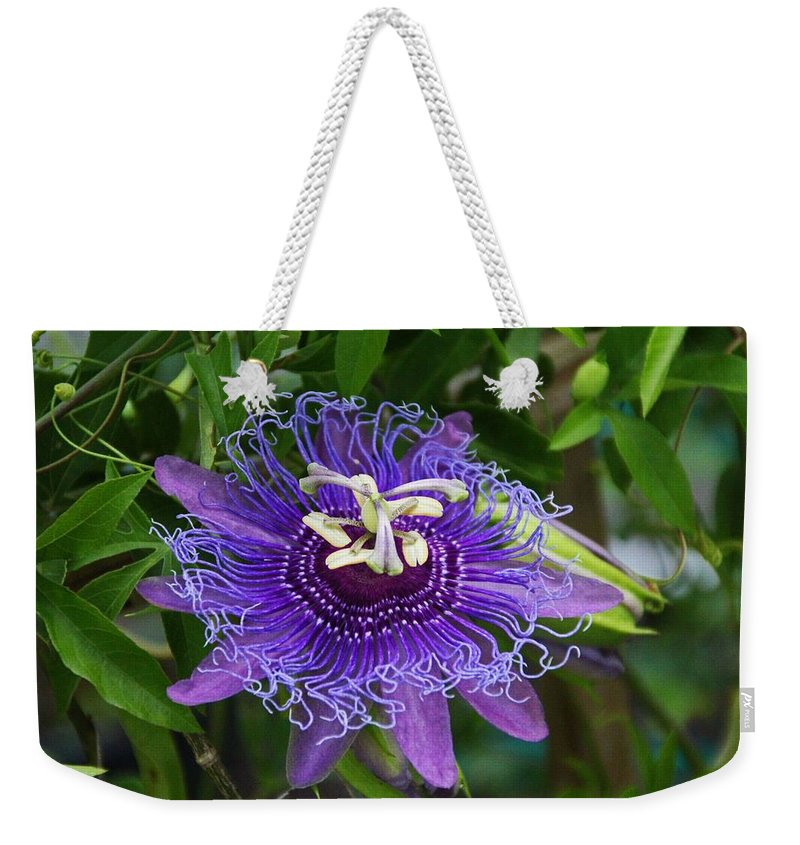 Purple Weekender Tote Bag featuring the photograph Peaceful Passion by Michiale Schneider