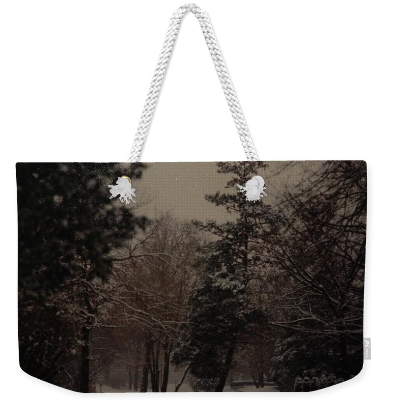 Lights Weekender Tote Bag featuring the photograph Peaceful Snow Dusk by Rob Hans
