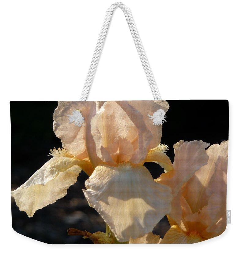 Flower. Iris Weekender Tote Bag featuring the photograph Peach Bearded Iris by Ruth Kamenev