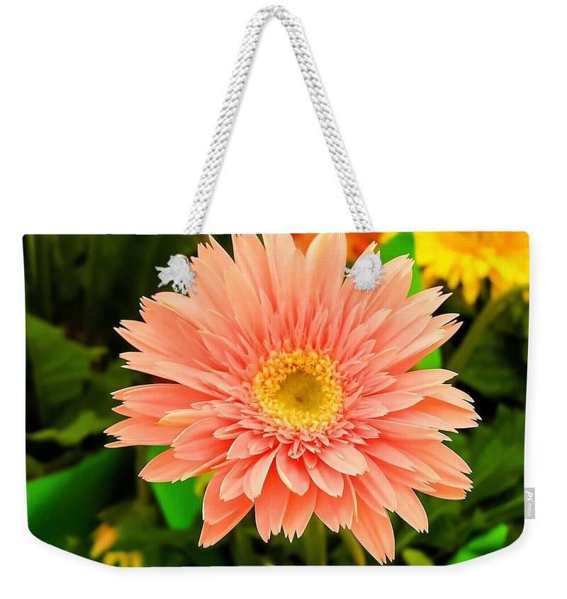 Peach Gerbera Weekender Tote Bag featuring the photograph Peach Gerbera Daisy by Cynthia Woods