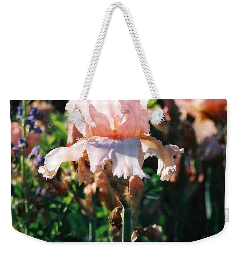 Flower Weekender Tote Bag featuring the photograph Peach Iris by Steve Karol