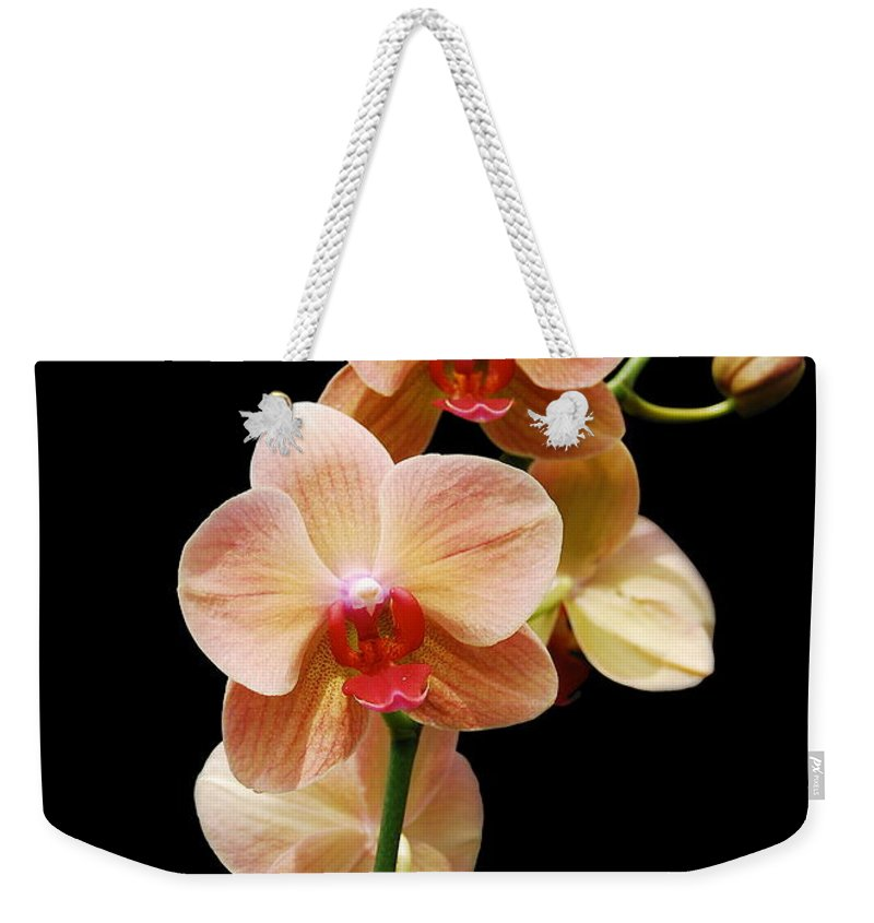 Orchids Weekender Tote Bag featuring the photograph Peach Orchids by Michael Peychich