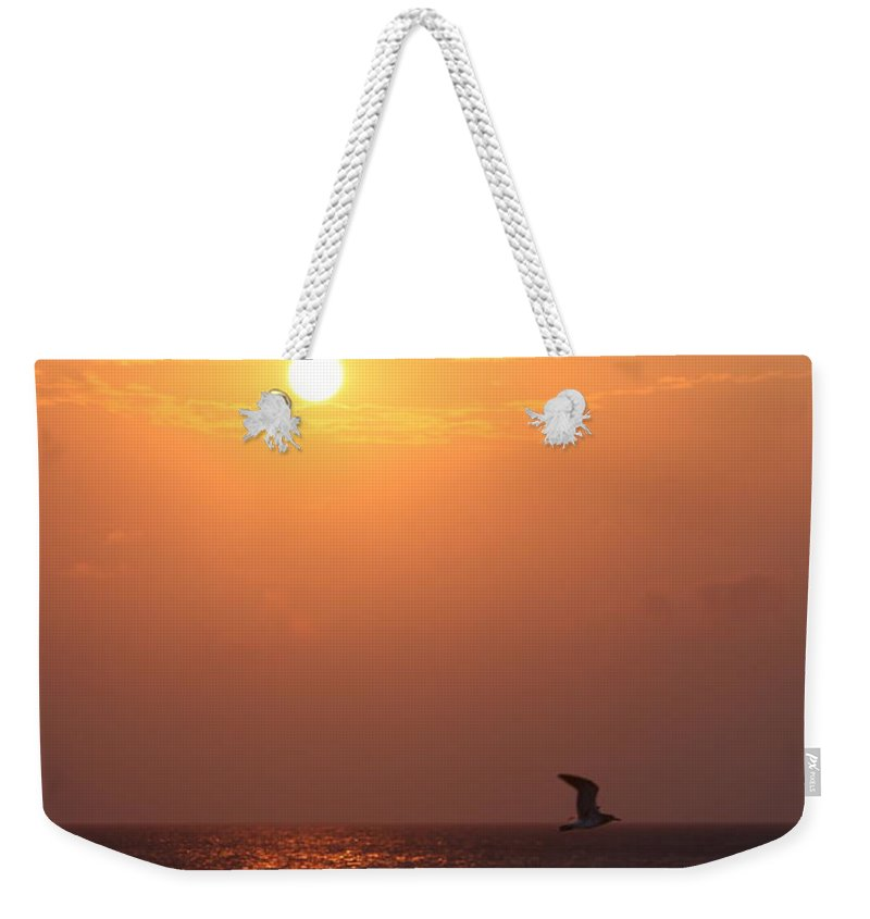 Birds Weekender Tote Bag featuring the photograph Peach Sunrise And Bird In Flight by Nadine Rippelmeyer