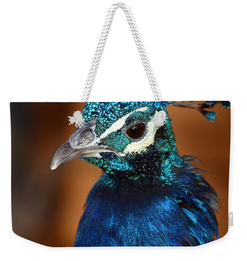 Peacock Weekender Tote Bag featuring the photograph Peacock by Anthony Jones