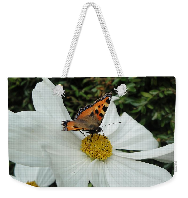 Butterfly Weekender Tote Bag featuring the photograph Peacock Butterfly On Cosmos by Susan Baker