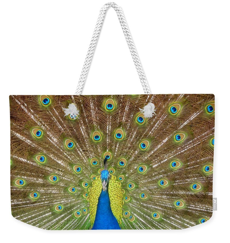 Peacock Weekender Tote Bag featuring the photograph Peacock by David Lee Thompson
