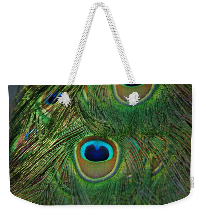 Feather Weekender Tote Bag featuring the photograph Peacock Feather by Maria Keady