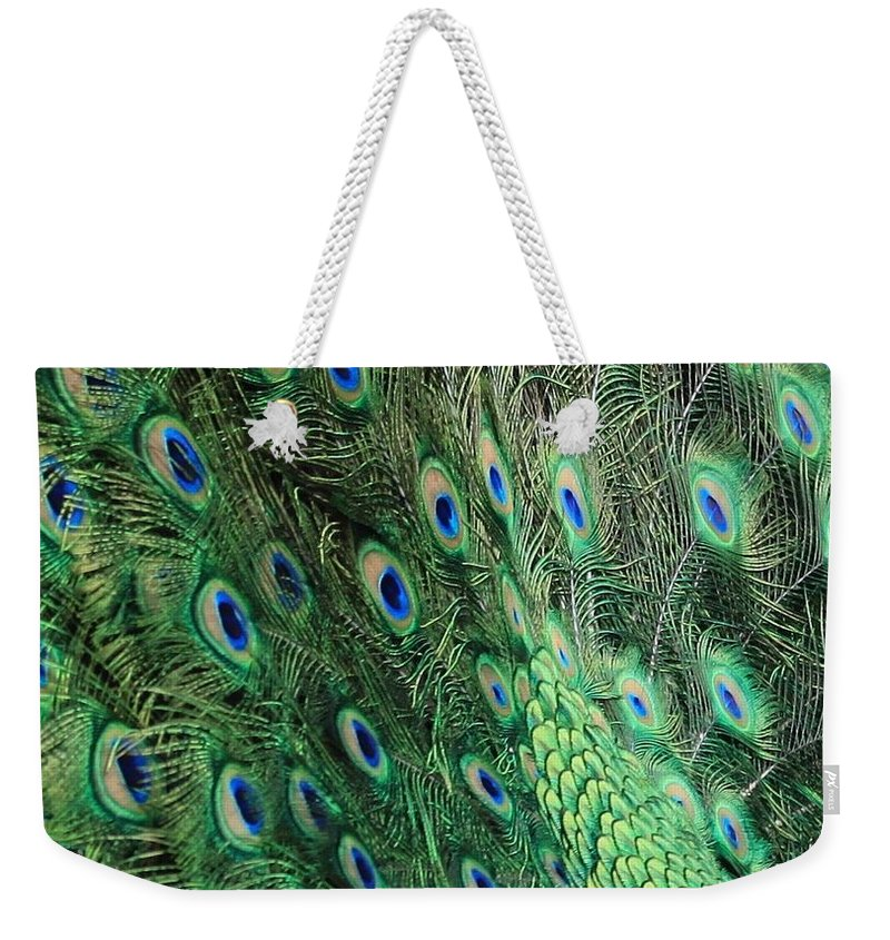 Peacock Feather Pattern Weekender Tote Bag featuring the photograph Peacock Feather Pattern by Rose Webber Hawke