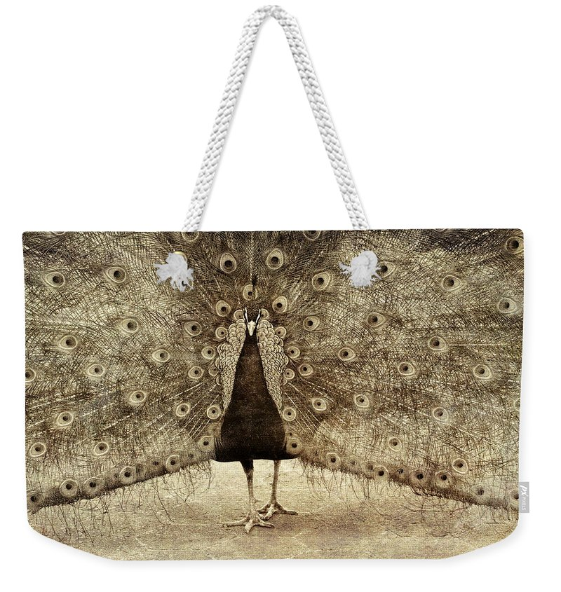 Alicegipsonphotographs Weekender Tote Bag featuring the photograph Peacock Grunge by Alice Gipson