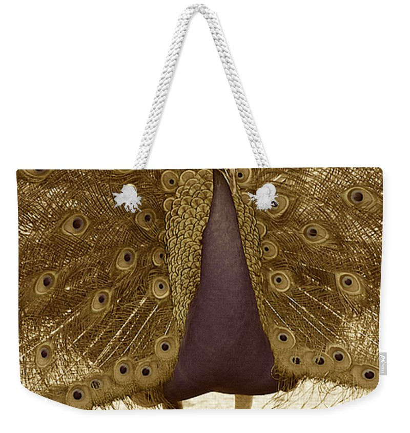 Peacock Weekender Tote Bag featuring the photograph Peacock In Sepia by Brooke Roby