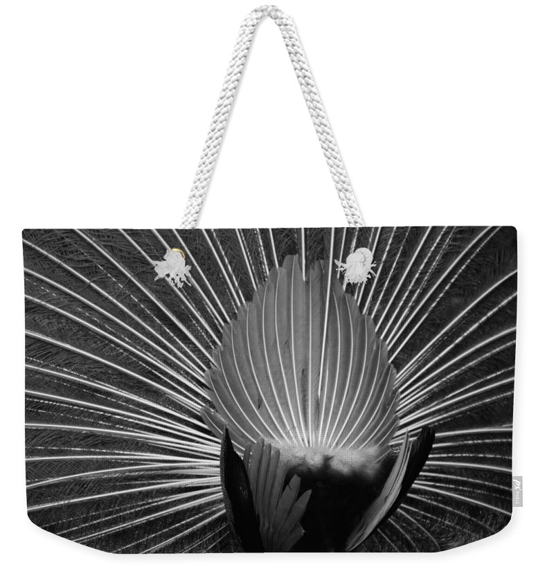 Macro Weekender Tote Bag featuring the photograph Peacocks Ass Original by Rob Hans