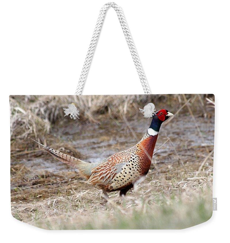 Rooster Weekender Tote Bag featuring the photograph Peak by Lori Tordsen