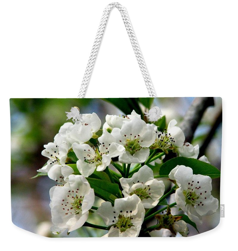 Pear Tree Blossum Weekender Tote Bag featuring the photograph Pear Tree Blossoms 1 by J M Farris Photography