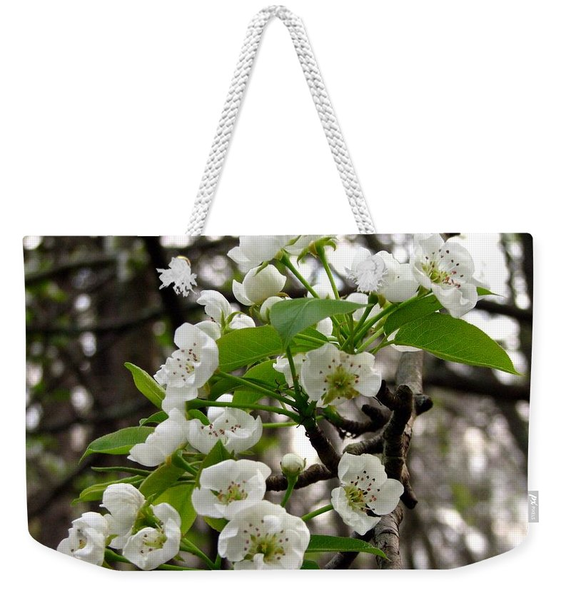 Pear Tree Blossum Weekender Tote Bag featuring the photograph Pear Tree Blossoms 2 by J M Farris Photography