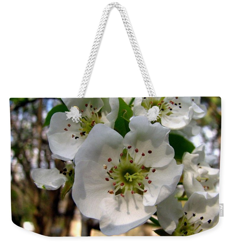 Pear Tree Blossum Weekender Tote Bag featuring the photograph Pear Tree Blossoms 3 by J M Farris Photography