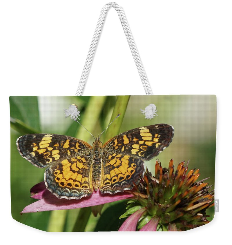Pearl Crescent Butterfly Weekender Tote Bag featuring the photograph Pearl Crescent Butterfly On Coneflower by Robert E Alter Reflections of Infinity