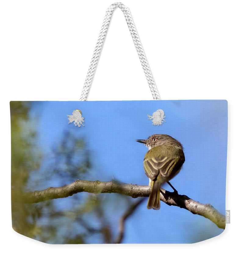 Bird Weekender Tote Bag featuring the photograph Pearly-vented Tody-tyrant by Pablo Rodriguez Merkel