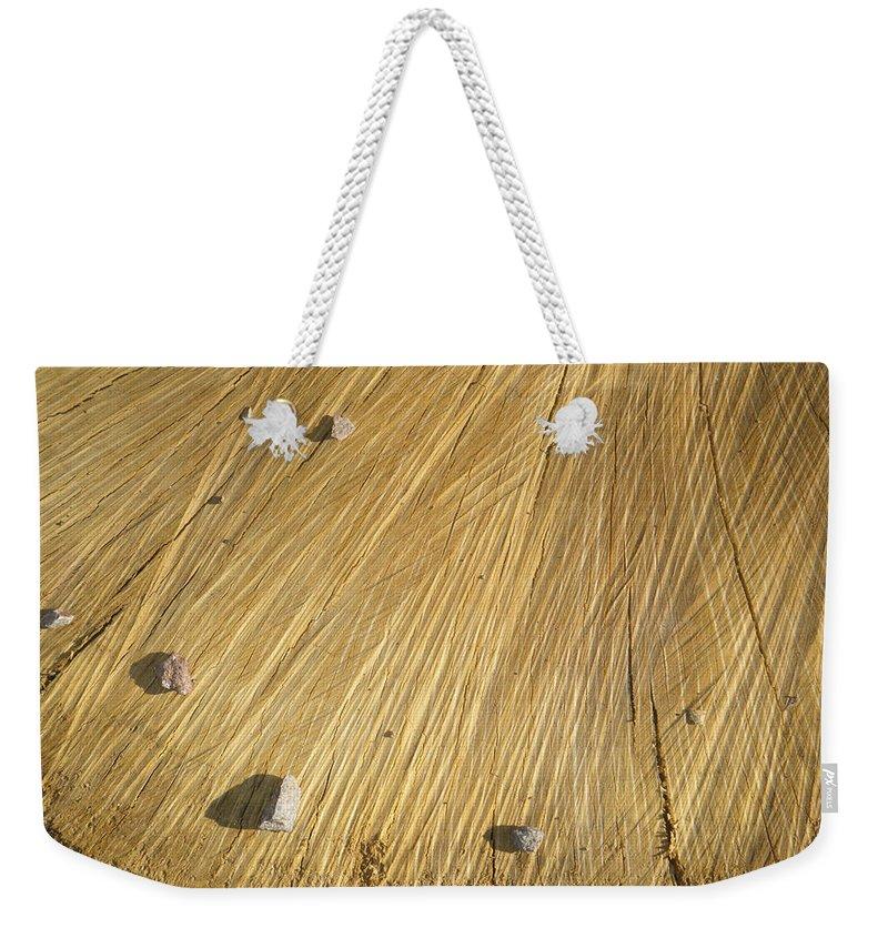 Tamara Kulish Weekender Tote Bag featuring the photograph Pebbles And Texture On A Crosscut Log by Tamara Kulish