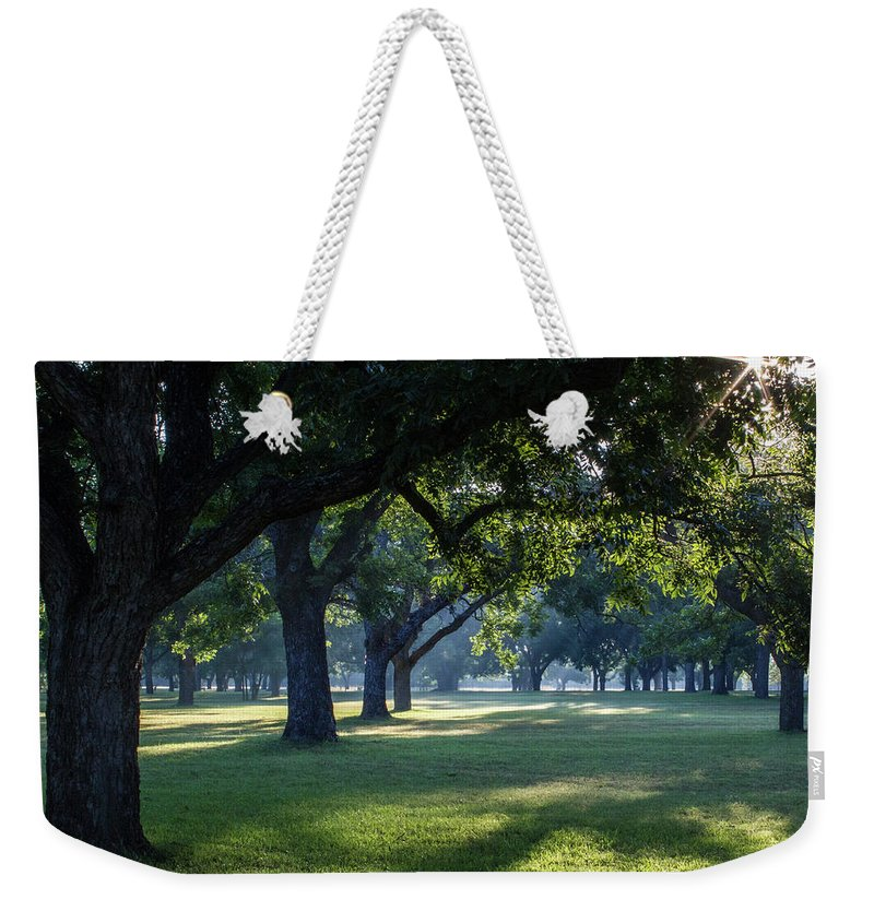 Pecan Grove Sunrise Weekender Tote Bag featuring the photograph Pecan Grove Sunrise by David Werner