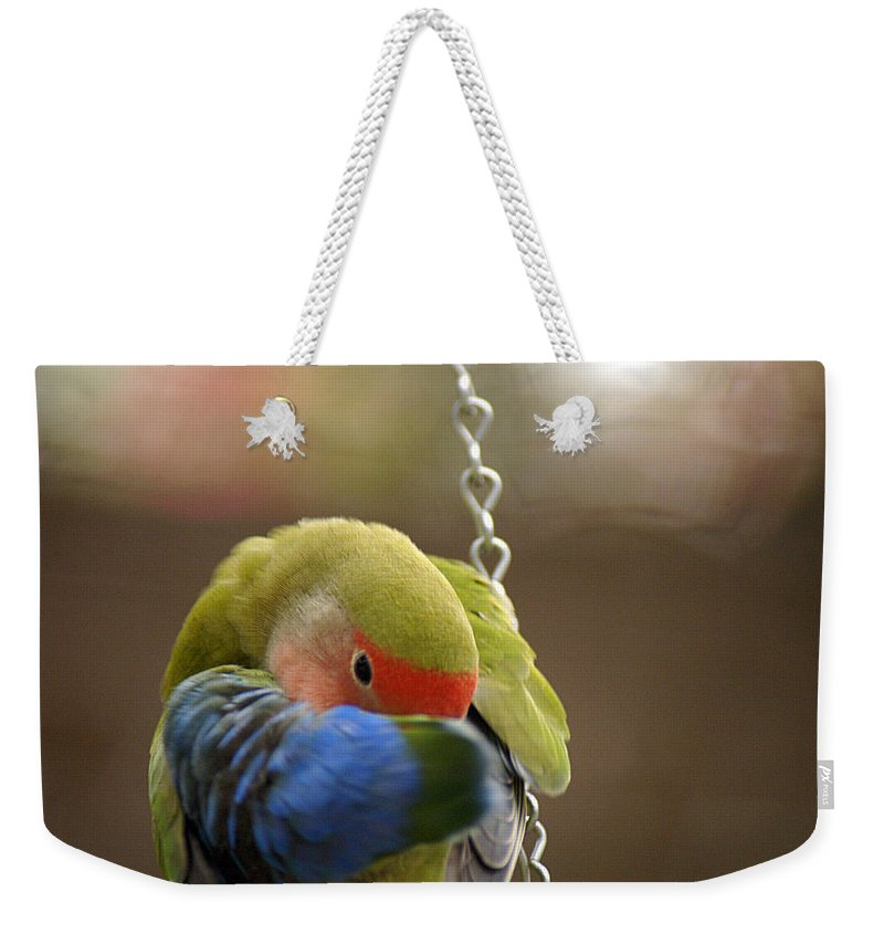 Clay Weekender Tote Bag featuring the photograph Peek A Boo by Clayton Bruster
