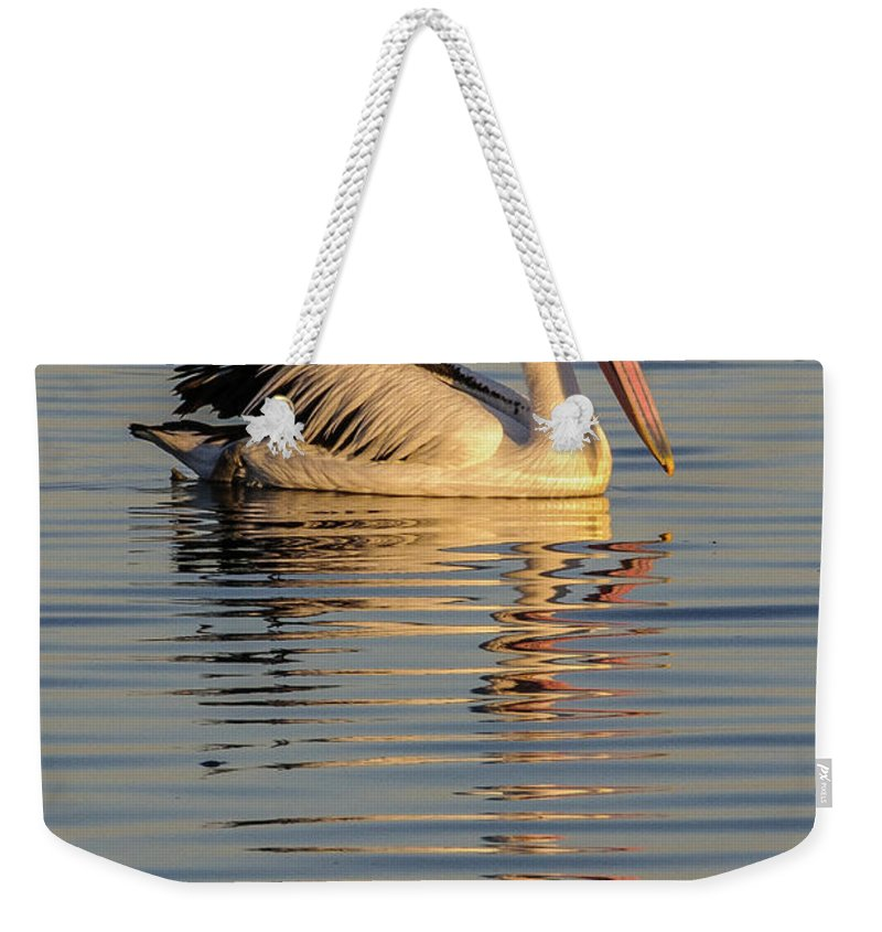 Bird Weekender Tote Bag featuring the photograph Pelican At Sunset 1 by Werner Padarin