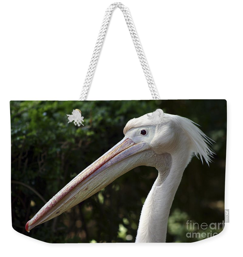 Close Up Weekender Tote Bag featuring the photograph Pelican by Danny Yanai