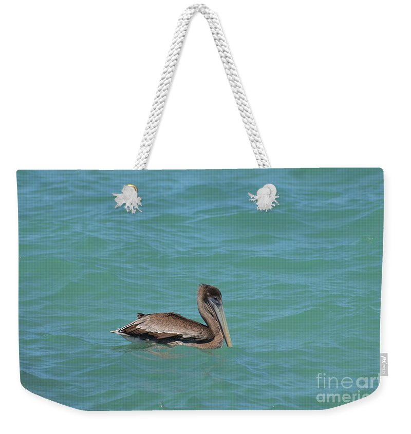 Pelican Weekender Tote Bag featuring the photograph Pelican Floating In The Tropical Waters In Aruba by DejaVu Designs