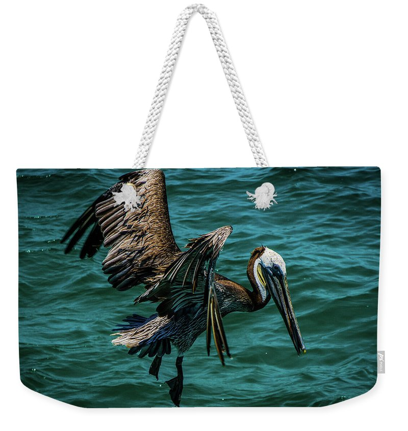 Landscape Weekender Tote Bag featuring the photograph Pelican Glide by Jason Brooks