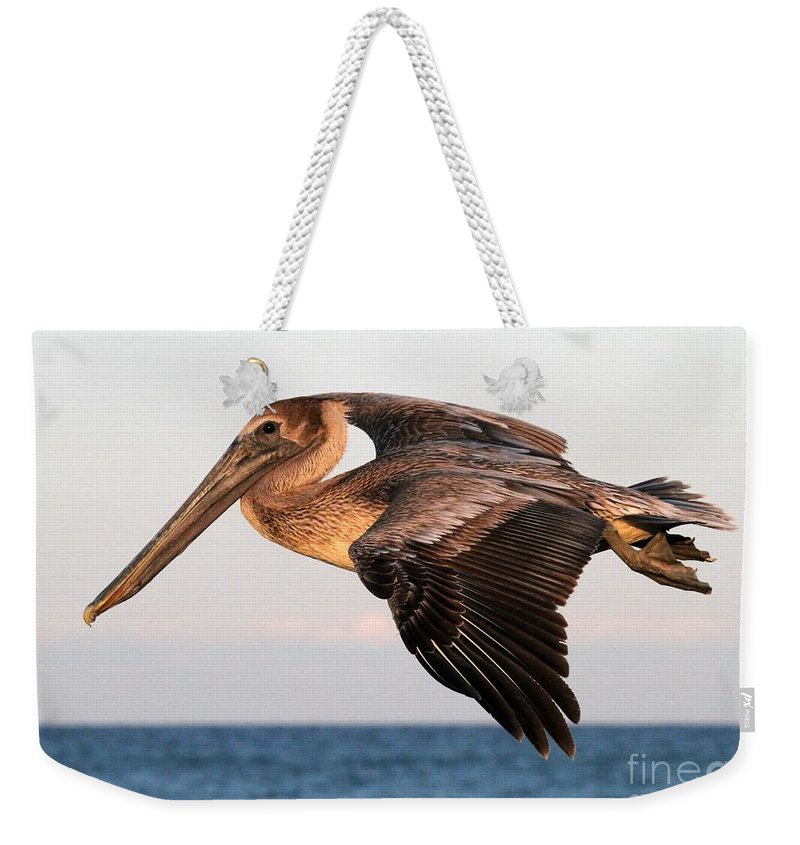 Pelican Weekender Tote Bag featuring the photograph Pelican In Flight At Sunset by Sabrina L Ryan