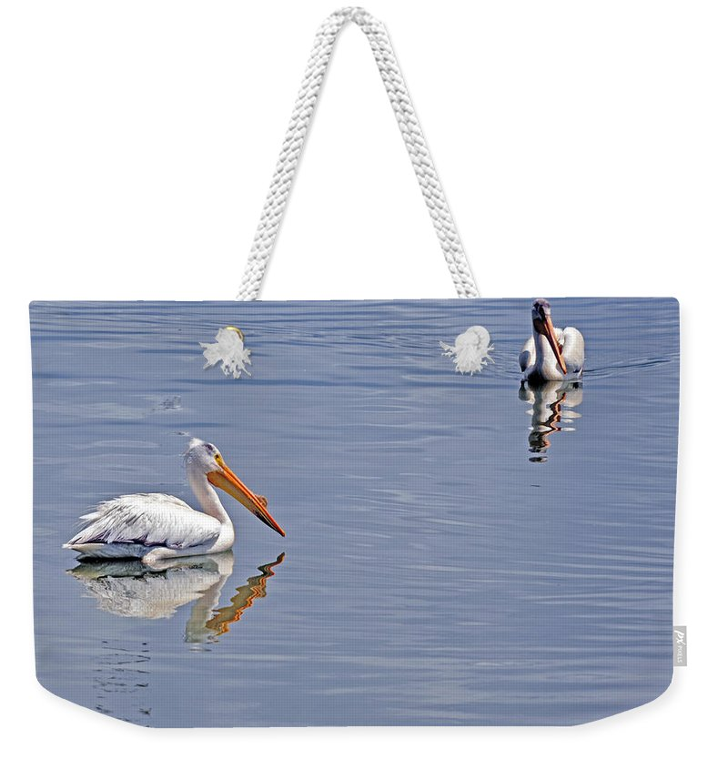 Pelican Weekender Tote Bag featuring the photograph Pelican Mates by Terry Anderson