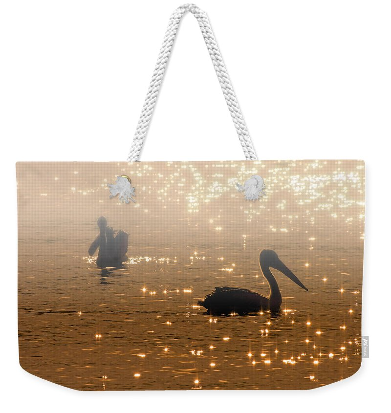 Pelican Weekender Tote Bag featuring the photograph Pelican Sunrise by Mike Dawson