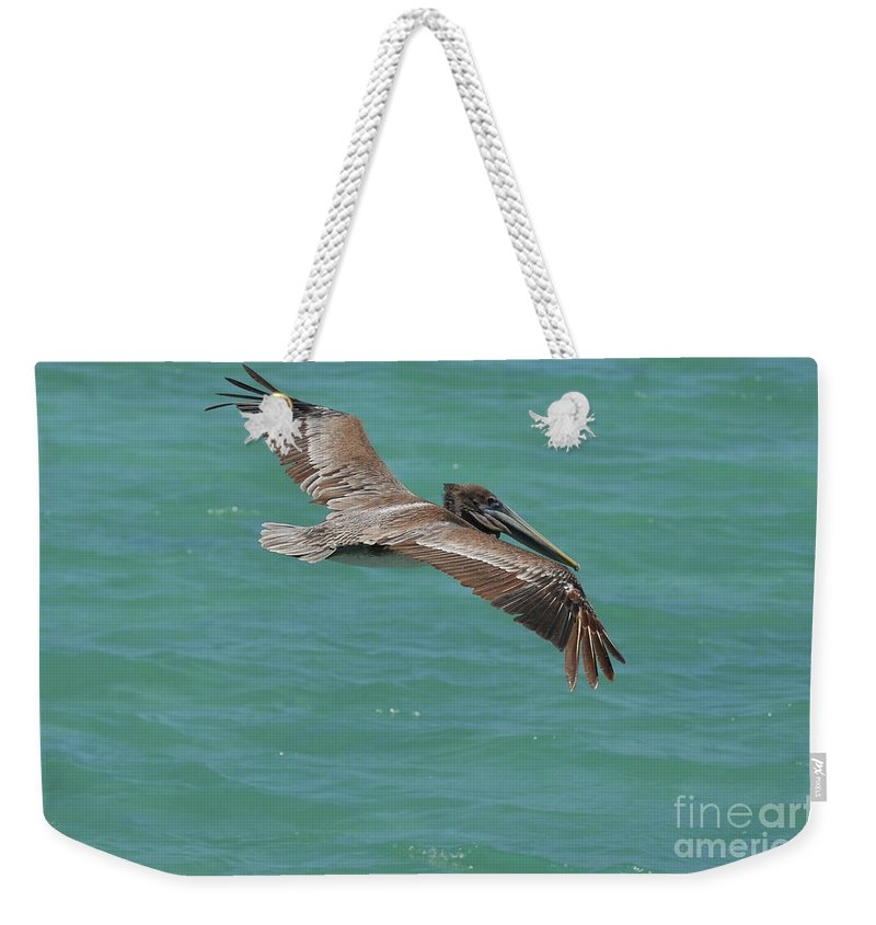 Pelican Weekender Tote Bag featuring the photograph Pelican With His Wings Extended Over The Tropical Aruban Waters by DejaVu Designs