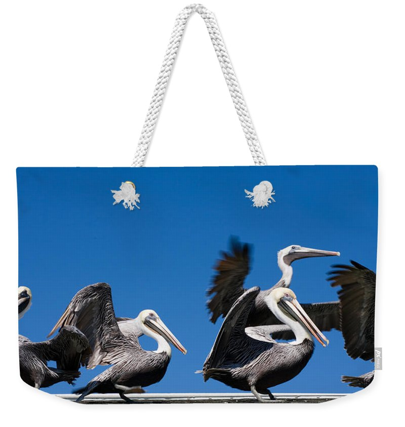 Pelicans Weekender Tote Bag featuring the photograph Pelicans Take Flight by Mal Bray