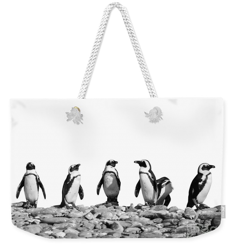 Penguin Weekender Tote Bags