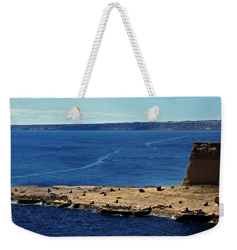 South America Weekender Tote Bag featuring the photograph Peninsula De Valdez by Juergen Weiss