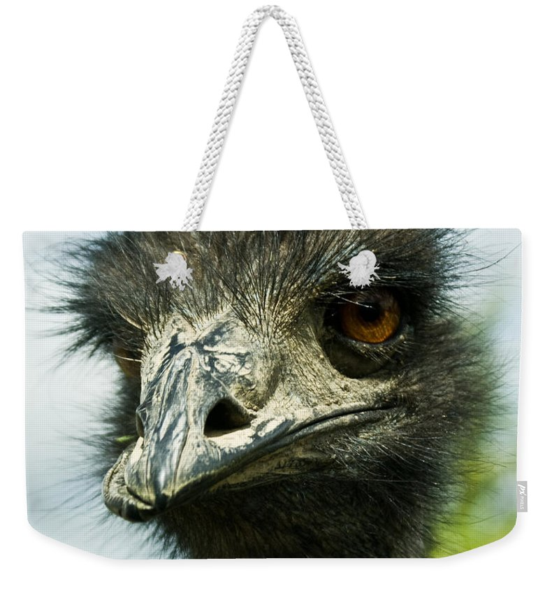 Ostrich Weekender Tote Bag featuring the photograph Pensive Ostrich by Douglas Barnett