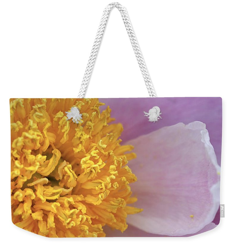 Flower Weekender Tote Bag featuring the photograph Peonie Yellow Center by Deborah Benoit