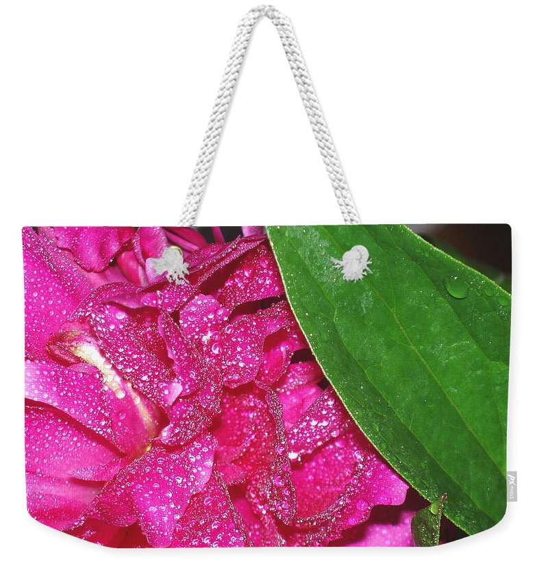 Peony Weekender Tote Bag featuring the photograph Peony And Leaf by Nancy Mueller