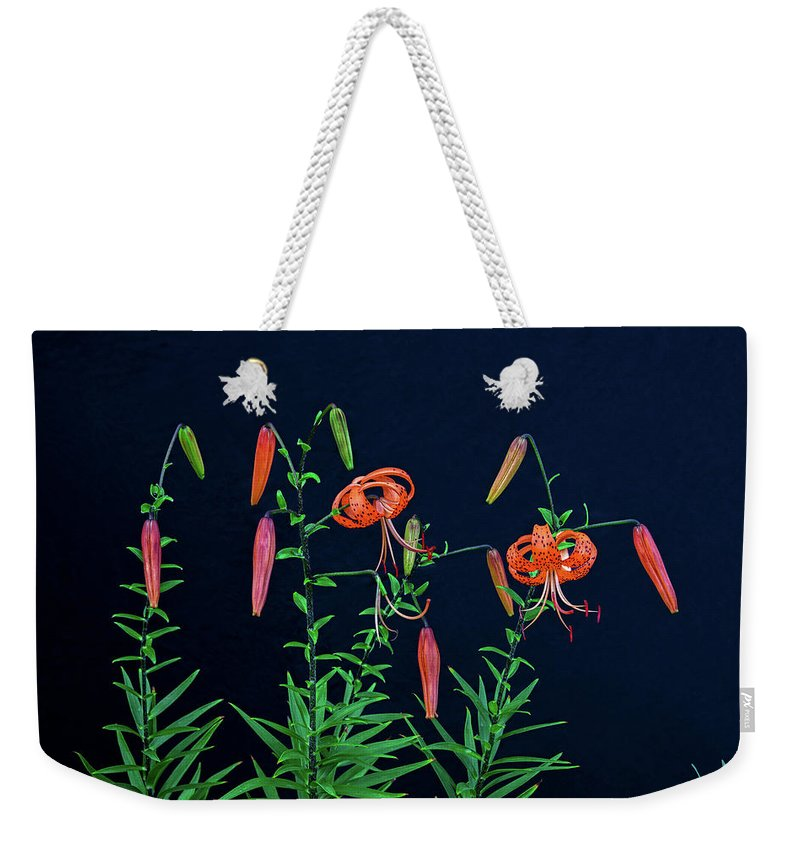 Tiger Lilies Weekender Tote Bag featuring the photograph People Are Not Prisoners Of Fate, But Only Prisoners Of Their Own Minds. by Bijan Pirnia