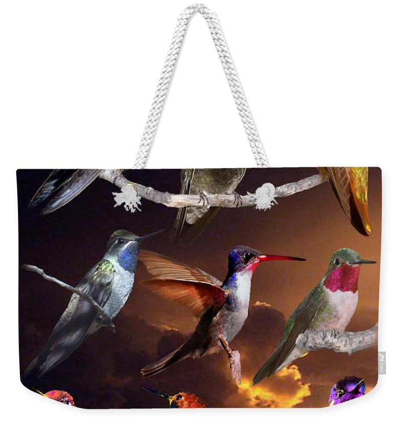 Hummingbird Collage Weekender Tote Bag featuring the photograph Perched Hummingbird Collage by David Salter