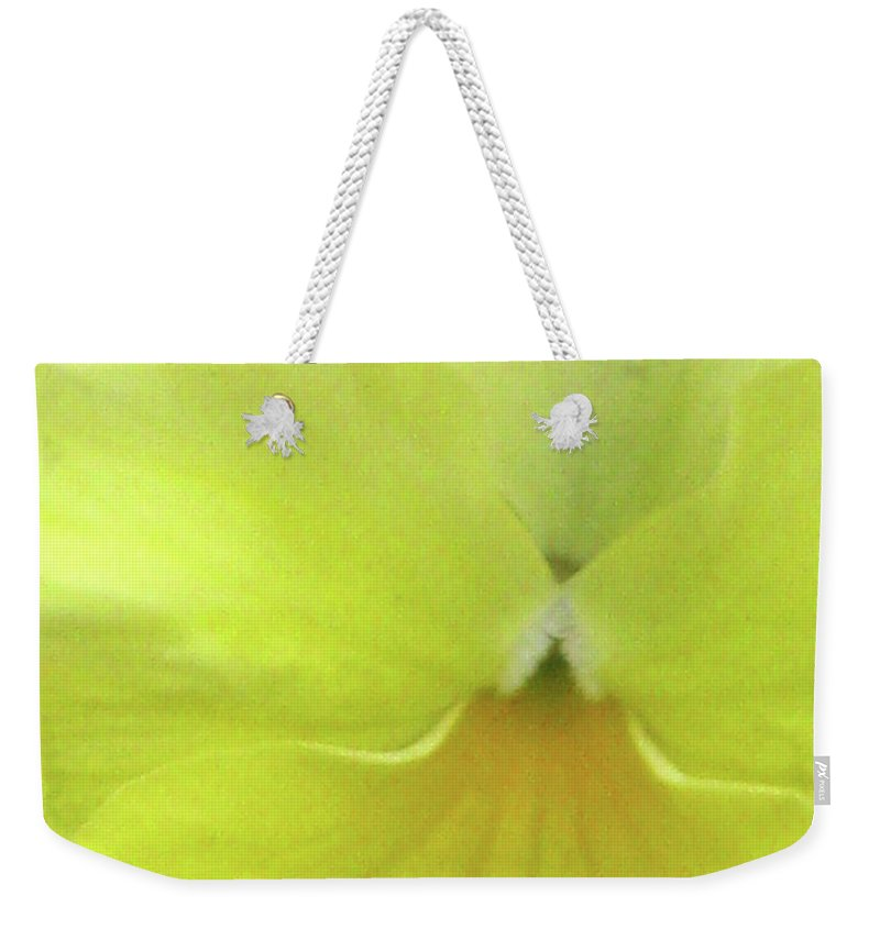 Pansy Weekender Tote Bag featuring the photograph Perfectly Pansy 07 by Pamela Critchlow