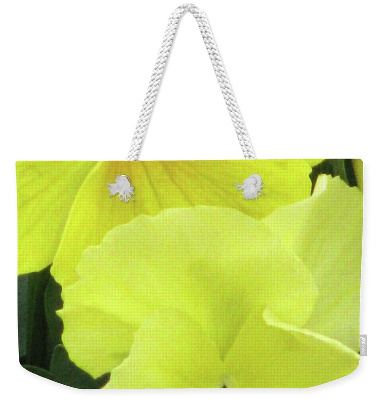 Pansy Weekender Tote Bag featuring the photograph Perfectly Pansy 09 by Pamela Critchlow