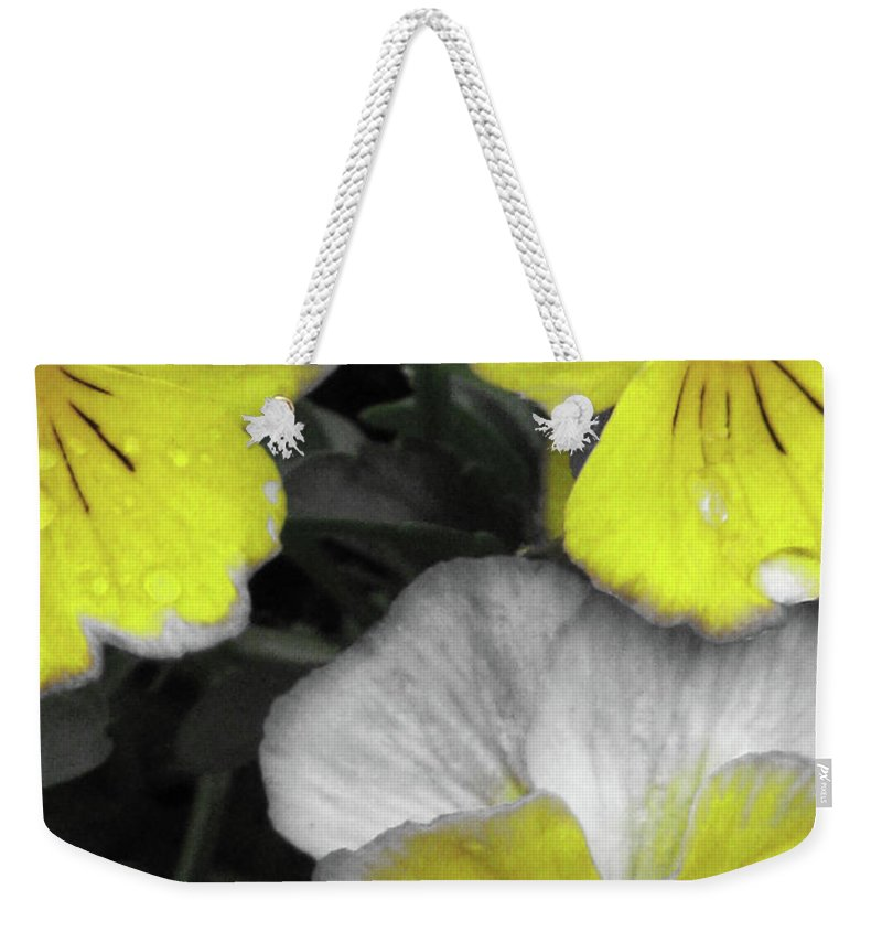 Pansy Weekender Tote Bag featuring the photograph Perfectly Pansy 13 - Bw - Yellow by Pamela Critchlow