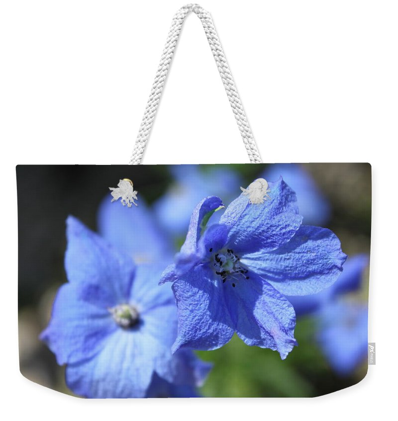 Flower Weekender Tote Bag featuring the photograph Periwinkle Flower by Lauri Novak