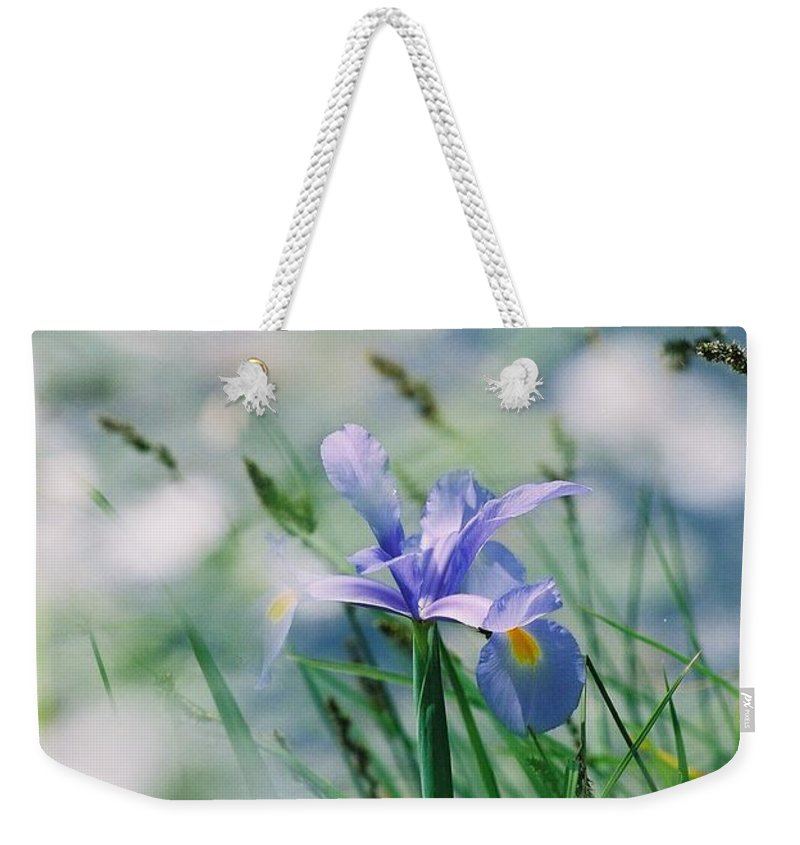 Periwinkle Weekender Tote Bag featuring the photograph Periwinkle Iris by Nadine Rippelmeyer