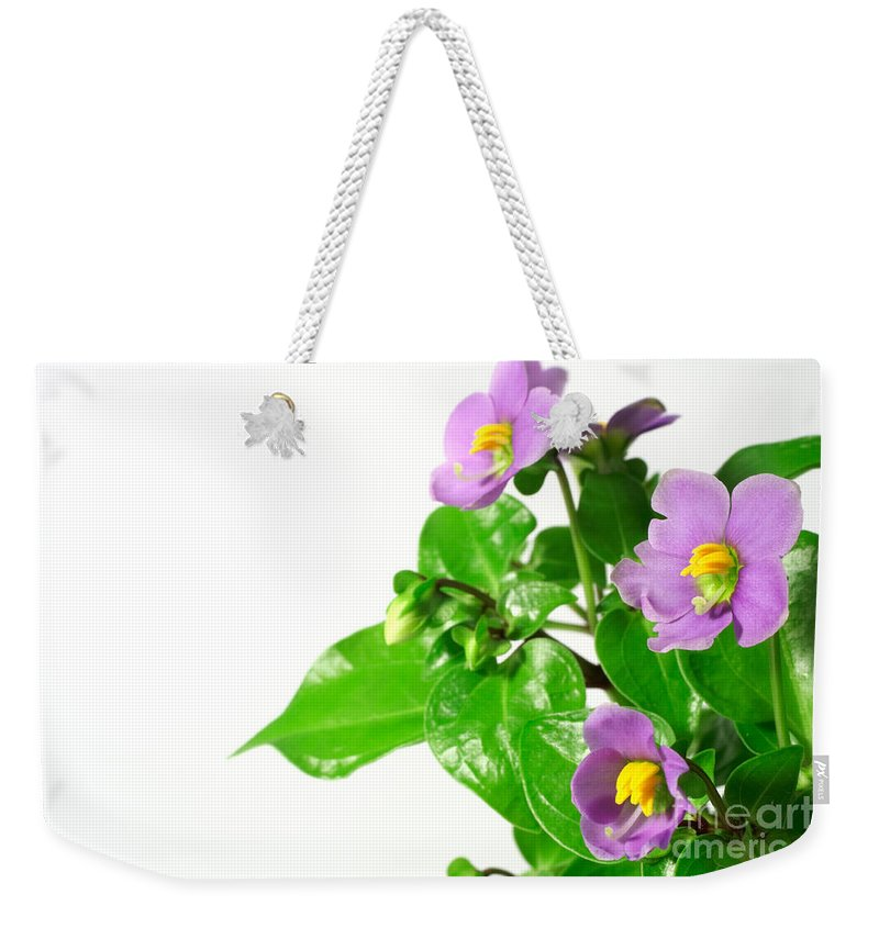 Closeup Weekender Tote Bag featuring the photograph Persian Violets by Gaspar Avila