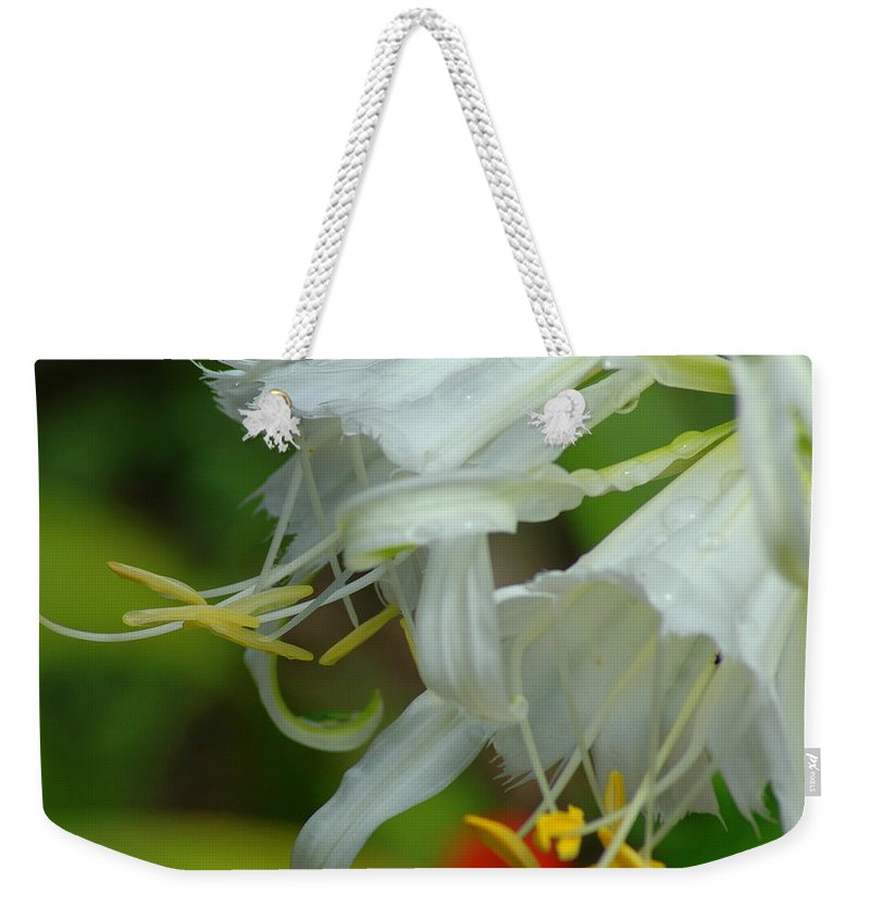Peruvian Weekender Tote Bag featuring the photograph Peruvian Lilies 3 by Teresa Stallings